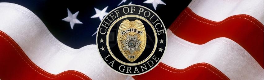 LGPD Chief's Seal w/ Flag
