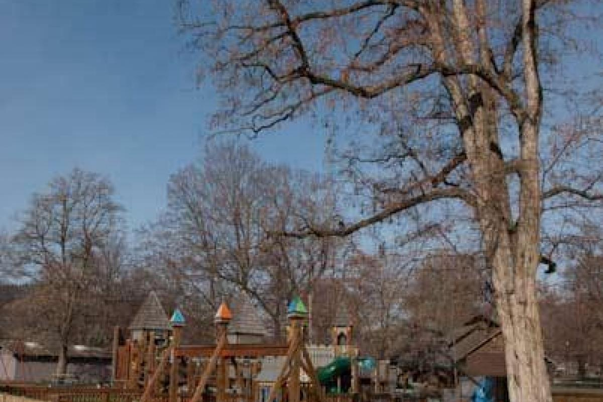Play Area - Spring Is Near