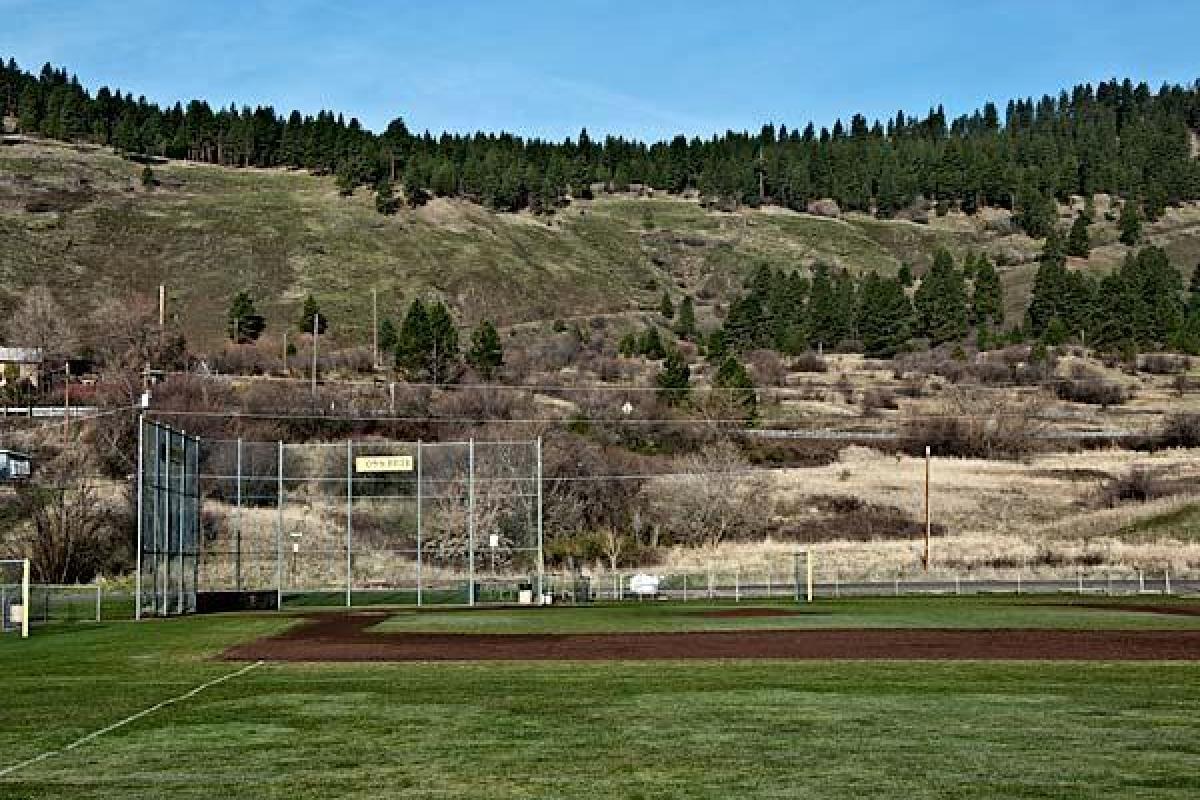 Lions Field